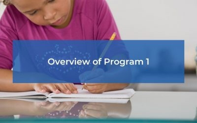 Overview of Program 1