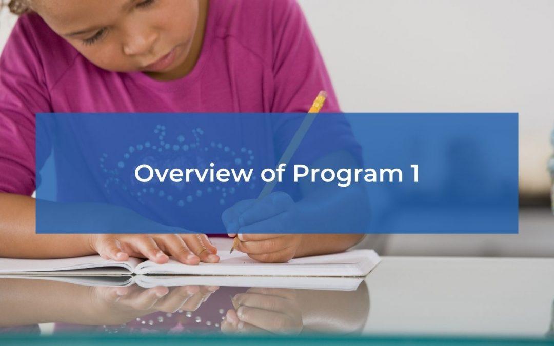 Overview of Program 1